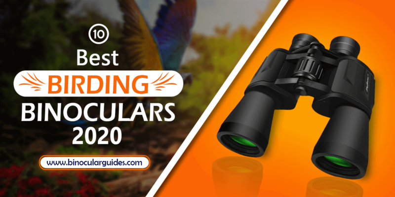 Top 10 Best Binoculars for Birding 2020