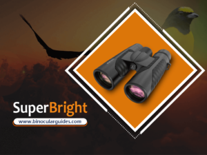 12x42 Binoculars for Adults – Best for Novice birder