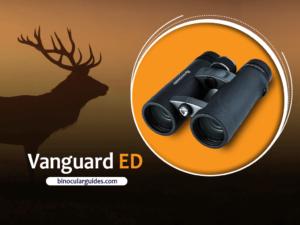 Vanguard Endeavor ED– Best Rated Binoculars for Elk Hunting