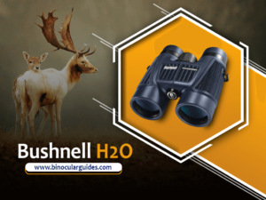 Bushnell H2O – Fog and Waterproof binoculars for Safari