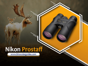 Nikon Prostaff 7s – Under 200$
