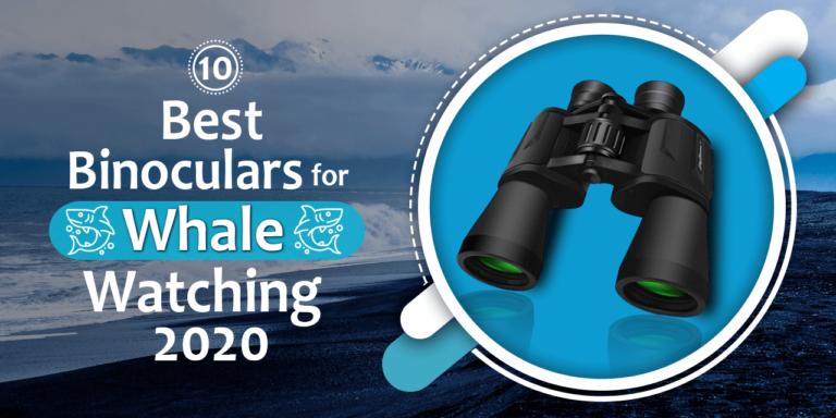 Top 10 Best Binoculars for Whale Watching 2020
