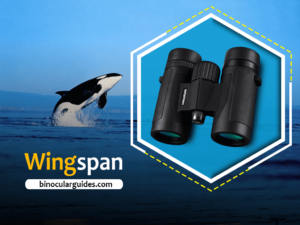 Wingspan Optics – Best binoculars for Whale Watching Under 100$
